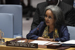 Security Council Meeting on Cooperation between the UN and AU
