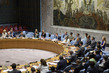 Security Council Meets on Central Africa