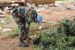 Tree Planting Initiative in South Sudan 4.464791