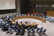 Security Council Considers Situation in Democratic Republic of Congo 3.9914737