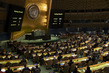 General Assembly Considers United States Embargo Against Cuba 0.07881458