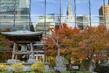 Scene from UN Headquarters in New York 5.9459157