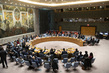 Security Council Considers Situation in Somalia and Eritrea 3.9852035