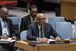 Security Council Consider Situation in Sudan and South Sudan 3.9852035