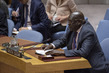 Security Council Considers Situation in Sudan and South Sudan 3.9852035