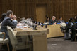 Meeting of Committee on Exercise of Inalienable Rights of Palestinian People
