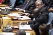 Security Council Considers Cooperation Between UN and Regional Organizations