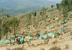 United Nations Assistance Mission for Rwanda (UNAMIR) 5.147619
