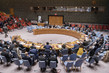 Security Council Meets on International Residual Mechanism for Criminal Tribunals 1.0