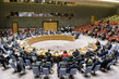 Security Council Adopts Resolution on Humanitarian Access in Syria 1.0