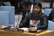 Security Council Meets on Sudan and South Sudan
