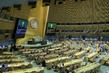 General Assembly Meets on Anniversary of Declaration on Rights and Responsibility of Individuals 3.2262661