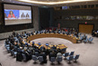 Security Council Meets on Situation Concerning Democratic Republic of Congo 3.9728403