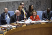 Security Council Considers Situation in Mali 3.9713216