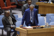 Security Council Considers Situation in Sudan and South Sudan 3.9713216