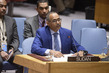 Security Council Considers Situation in Sudan and South Sudan 3.9712348