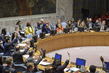 Security Council Extends Mandate of Sudan Panel of Experts 3.9663124