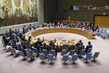 Security Council Considers Situation in Sudan and South Sudan 3.9584074