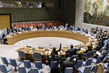 Security Council Unanimously Extends UNAMA Mandate 3.9584074
