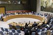Security Council Unanimously Extends UNAMA Mandate 3.959086