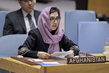 Security Council Considers Situation in Afghanistan 3.9579413