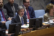 Security Council Considers Situation in Democratic Republic of Congo 3.9584074