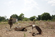 Third Time Internally Displaced People Arrives in Yei, South Sudan 3.578092