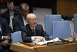 Security Council Considers Non-proliferation 1.0