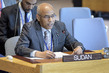 Security Council Considers Situation in Sudan and South Sudan 3.955052