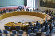 Security Council Extends Mandate of MINUJUSTH 3.955052