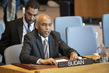Security Council Considers Sudan and South Sudan