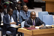 Security Council Considers Peace and Security in Africa 0.8405836