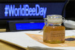 World Bee Day Observance at UNHQ 4.221548