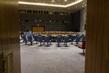 Scene at UN Headquarters in New York 3.9500284