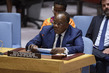 Security Council Considers Central African Region 0.55464137