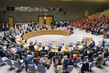 Security Council Briefed on Protection of Civilians in Armed Conflict 1.0