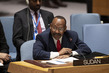 Security Council Considers Situation in Sudan and South Sudan