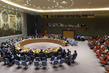 Security Council Considers Situation in Ukraine 3.9450002