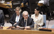 Security Council Considers International Residual Mechanism for Criminal Tribunals 3.9443297