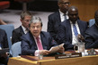 Security Council Considers Peacebuilding and Sustaining Peace 3.943725