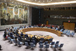 Security Council Hears Briefing on Mission to Colombia 2.8598623