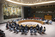 Security Council Considers Situation in Colombia 2.8576732