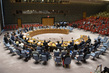 Security Council Adopts Resolution on Threats to International Peace and Security