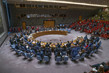 Security Council Fails to Adopt Draft Resolutions on Situation in Syria 3.9351728