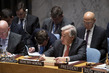 Security Council Considers Centrality of Preventative Diplomacy, Conflict Prevention and Resolution 3.9350307