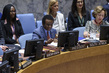 Security Council Considers Situation in Mali 3.9350307