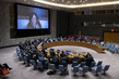 Security Council Considers Situation in Democratic Republic of Congo 3.9350307