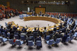 Security Council Extends Mandate of UNISFA 3.9344094
