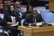 Security Council Considers Situation in Sudan