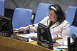 Security Council Considers Situation in Bosnia and Herzegovina 3.9301705